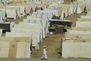 Swabi district. Displaced persons camp supported by the ICRC and the Pakistan Red Crescent Society.