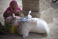 Lehri, Sibi District. A displaced woman with her food package.