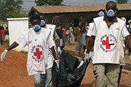 Duékoué. Volunteers from the Red Cross Society of Côte d'Ivoire remove a corpse for transportation to the morgue.