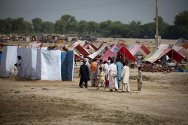 Dera Allah Yaar, Jaffarabad district, Balochistan, Pakistan. People set up latrines at a camp.