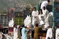Khyber Pakhtunkhwa province, Lower Dir district, village of Kamala. Workers unload seed, fertilizer and tools to be distributed by the ICRC to farmers who lost their harvests to the floods.