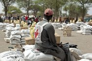 Agok, South Sudan. In March 2012, the ICRC provided approximately 15,000 people displaced by fighting with sesame, groundnuts and sorghum seed, plus tools for tilling and some food as seed protection.
