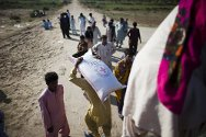 Pakistan, Jacobabad District, Aliabad. ICRC food distribution for people affected by the floods.