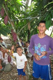 The ICRC's goal of helping the civilian population overcome the consequences of the armed conflict led to its decision to support cocoa farmers in the rural San Miguel region of Putumayo department. Jonathan Ramírez lives in La Unión district and is one of the 24 local farmers trained to teach other farmers and promote the initiative.