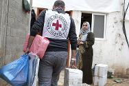 The ICRC and the Palestine Red Crescent Society assessed houses that were damaged during the recent violence in Gaza and brought emergency aid to the affected families.