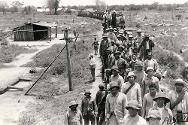 Puerto-Casado, Paraguay. A train arrives carrying ailing Bolivian prisoners of war.