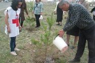 Gyumri, Armenia. Staff and volunteers from the Shirak regional branch of the Armenian Red Cross Society help families plant trees as reminders of relatives missing since the 1988-1994 Nagorny Karabakh conflict.