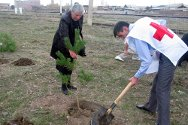 Gyumri, Armenia. Hasmik Pilosyan has had no news of her husband since he disappeared in 1991, during the Nagorny Karabakh conflict. She still hopes that one day he will come back and look after the tree she is planting.