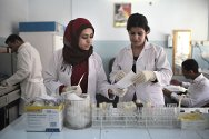 Makhmour. Laboratory personnel at work in an ICRC-supported primary health-care centre.