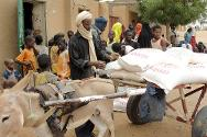 Bagoundjé, near Gao, northern Mali. A beneficiary loads his cart following an ICRC distribution of food and essential items.