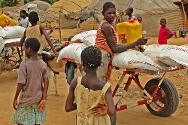 Gao, Mali. Cartloads of food arrive at a site where displaced persons are living.