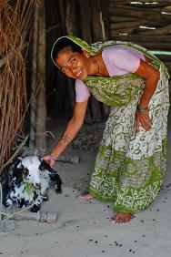 Samsergunj, Banke district, Nepal. A beneficiary of the Hateymalo programme poses with the nanny-goat she recently received.