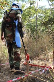 Zimbabwe. An officer uses a metal detector to search a dummy minefield during an exercise.