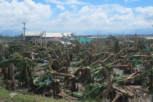 Compostela Philippines  city photos gallery : New Bataan, Compostela Valley province, Eastern Mindanao, Philippines ...