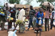 Nana Outa, May 2013. An ICRC distribution of food and seeds for 162 displaced families.