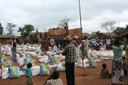 Nana Outa, May 2013. Central African Red Cross volunteers and ICRC staff prepare to commence distribution of food, cooking oil and seeds to displaced families.