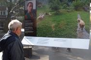 Photo exhibition about the families of missing persons.
