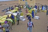 ICRC food distribution.