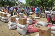 ICRC personnel distribute food and other essentials. For the past six months, the Red Cross Society of Niger and the ICRC have been distributing food to 6,000 people.