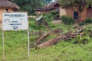 Nikpachilu is a tiny village of 20 families in Maryland County, nestling between a hevea plantation, the forest and cassava fields.