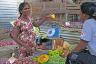A female breadwinner who returned home to Puthukudiyiruppu has started selling vegetables with ICRC support.