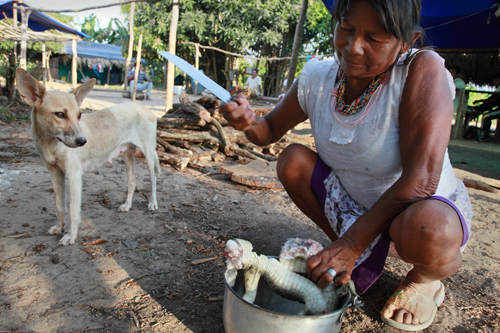 Colombia Stolen Land Stolen Lives Icrc