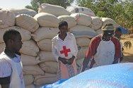 Gao, norte de Malí. Voluntarios de la Cruz Roja Maliense supervisan la descarga de bolsas con alimentos que se distribuirán entre personas desplazadas.