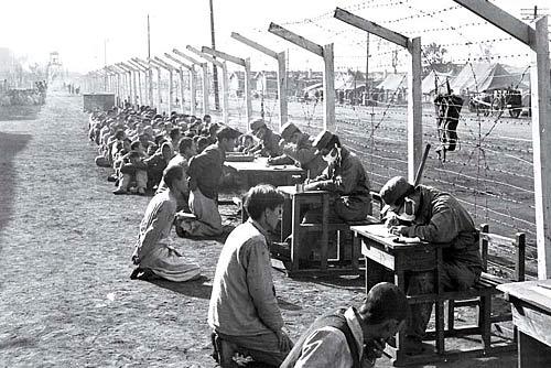 La humanidad en guerra: desde mediados del siglo XIX hasta