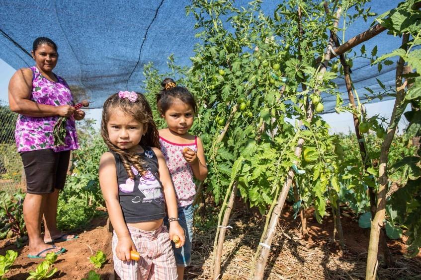 Paraguay: las huertas comunitarias ayudan a las familias
