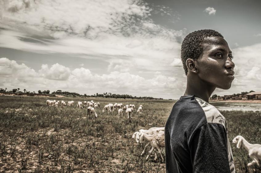 Доклад МККК: изменение климата и конфликт — катастрофическое сочетание для наиболее уязвимых