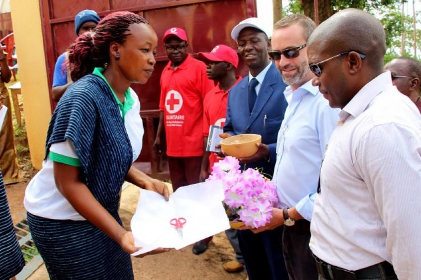 Guinea: un buen día en la oficina