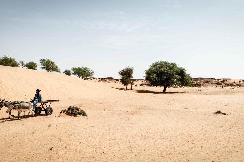 马里的隐形前线:冲突地区的气候变化