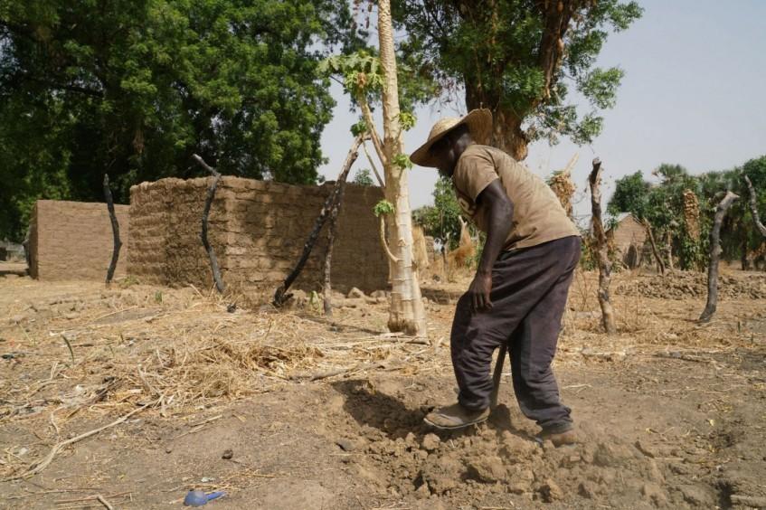 尼日利亚:为收容社区和流离失所者提供支持