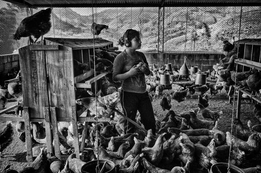 哥伦比亚的儿童兵——胡安·阿雷东多