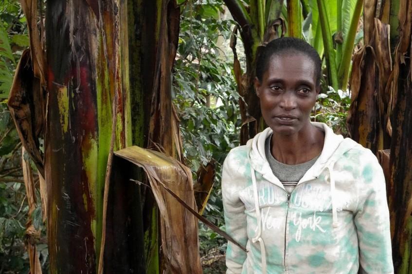 """埃塞俄比亚:""""我的房子被烧毁,农场也遭到破坏"""""""