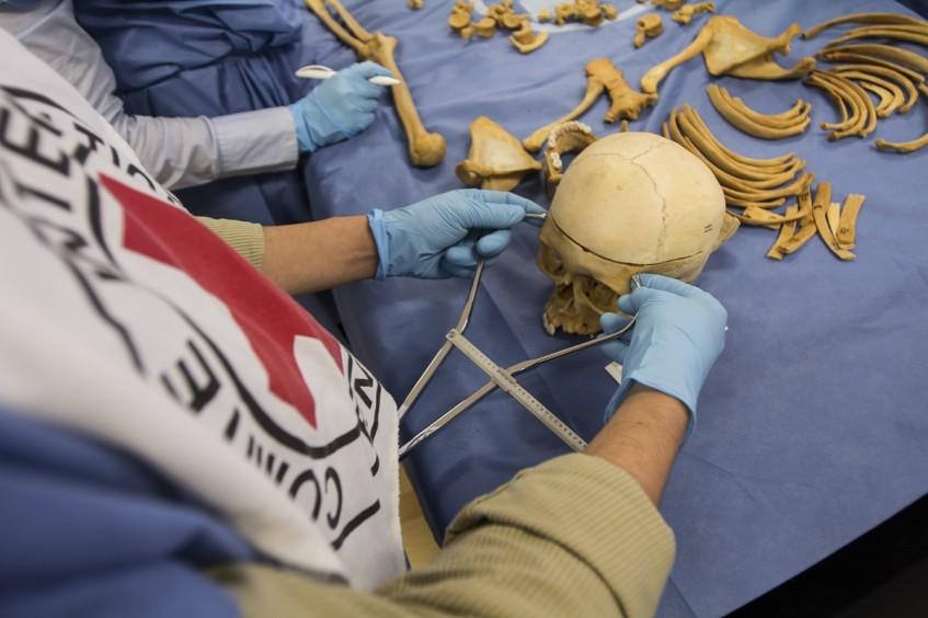 Panamá: el CICR brinda apoyo en actividades forenses para esclarecer casos de desaparición