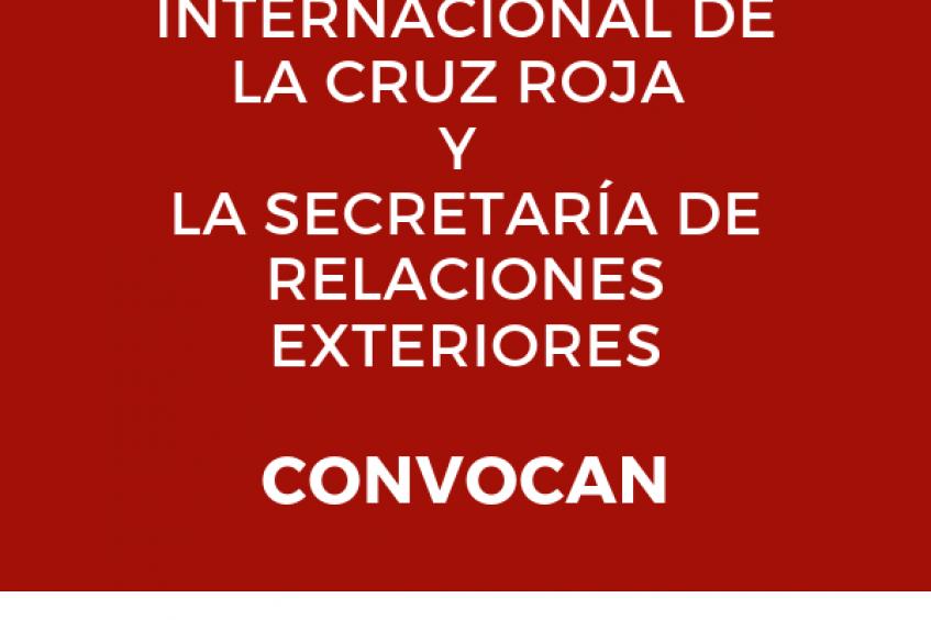 México: convocatoria para primera selección nacional para el concurso de DIH Jean Pictet 2020