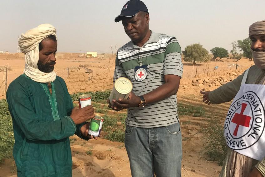Mali : « Quand on a les intrants, le travail devient plus facile ».