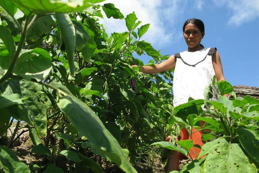 Filipinas: projeto melhora condições de vida das comunidades afetadas por conflitos