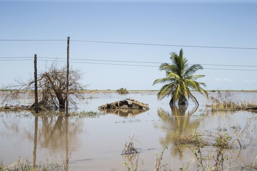"""强热带气旋""""伊代""""——在莫桑比克开展应对工作"""