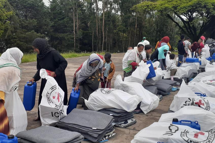 Resumen de las actividades del CICR en Etiopía: el desplazamiento de las líneas de frente en la región del norte obliga a más personas a huir de sus hogares