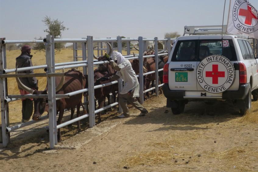 Mauritanie : actions marquantes du CICR en 2018