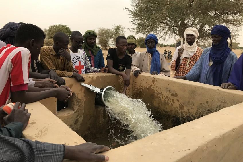 Mali : soutien à la production agricole dans la région de Tombouctou