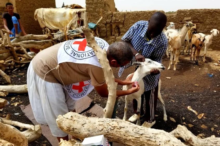 Mauritanie : soutien à l'élevage en 2018