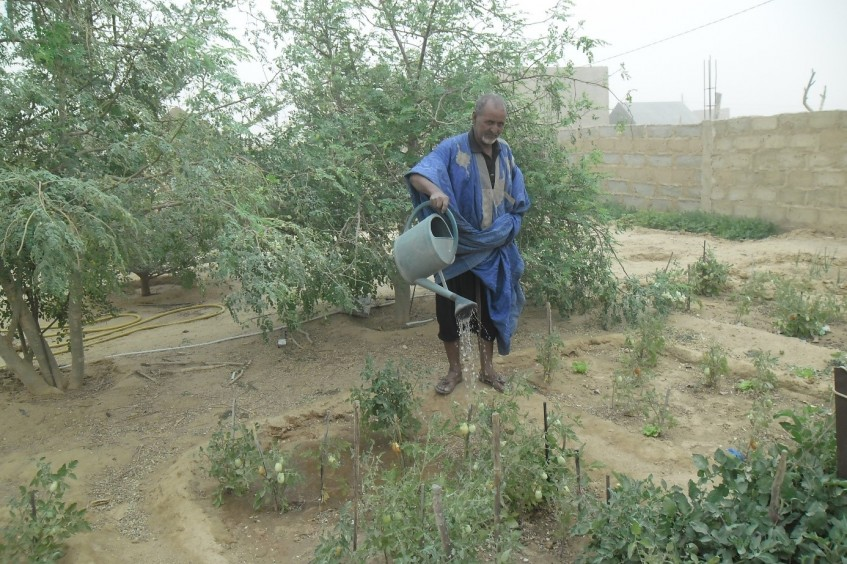 Mauritanie : de l'eau pour changer des vies