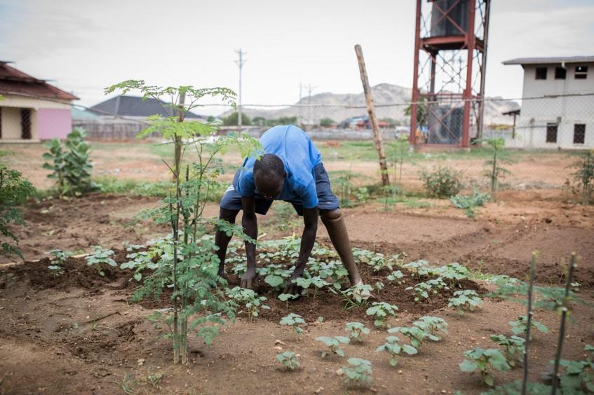 جنوب السودان: من جندي إلى بستاني، دانيال يغرس جذور الصمود