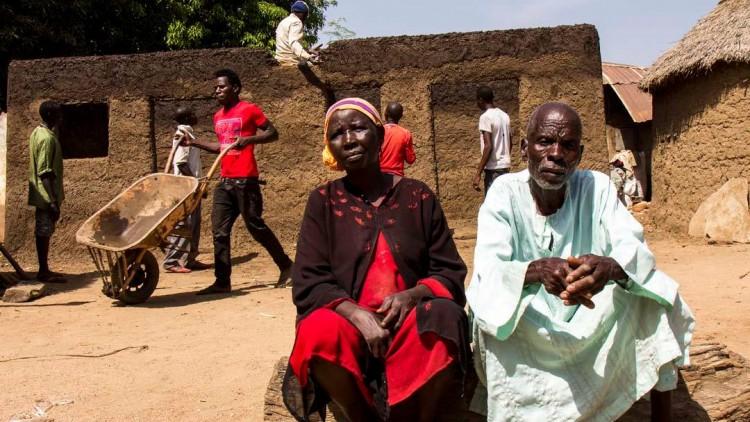 Нигерия: на северо-востоке страны сообщества возрождаются из руин