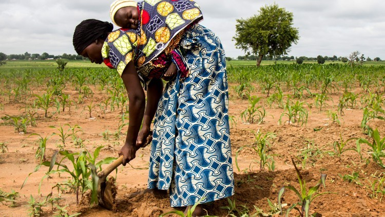 O CICV na África – Principais operações
