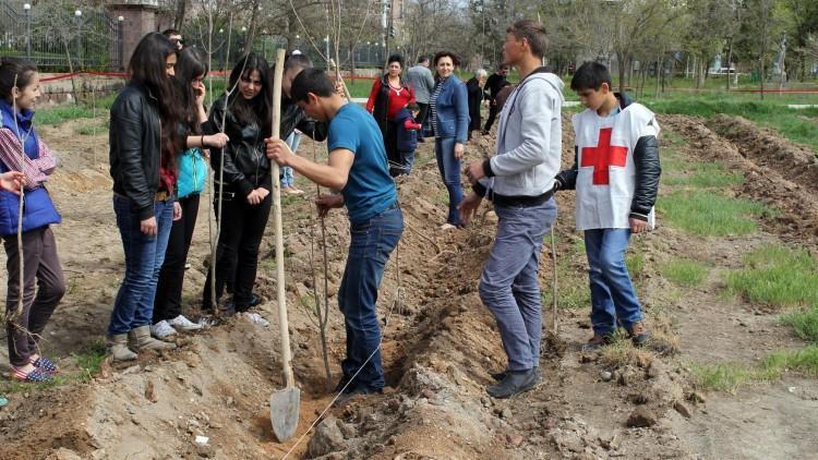 Armenia: los árboles como memoria viva