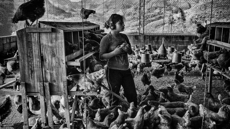 """Juan Arredondo, lauréat CICR à Visa pour l'Image : """"Les enfants soldats en Colombie"""""""